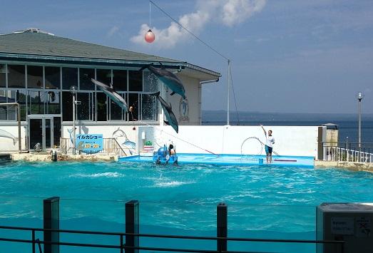 のとじま水族館2013.8.jpg