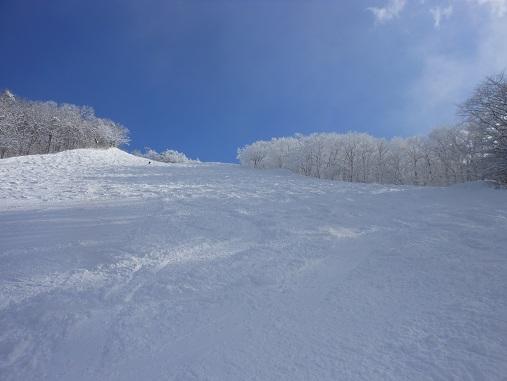 スキー 2013.1.4.jpg