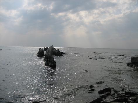 房総海1.JPG
